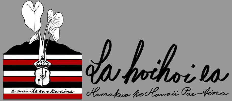 LHE Website banner